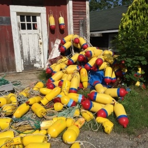 In many a front yard of a home in Stonington, you will find stacks of lobster traps and buoys, which mark the lobster fisherman's territory in the bay. Colorful that.