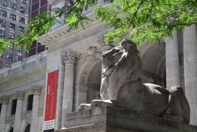 Either Patience or Fortitude, one half of the pair of famous marble lions, which was a part of the Beaux-Arts-style building when it was dedicated on May 23, 1911 (photo by David).