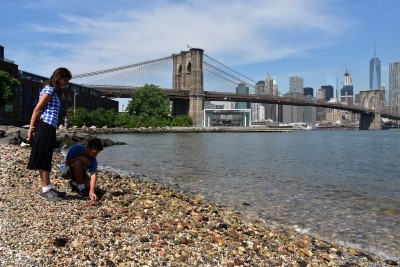 Skipping stones on the water's edge with the Brooklyn Bridge and Manhattan in the distance (photo by David).