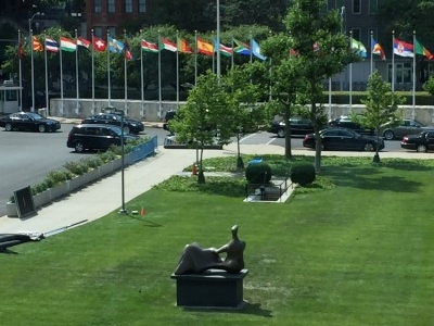 Oh, there are the flags! From the inside looking out, a grassy field and statue.