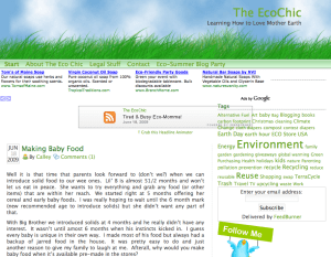 The Eco Chic