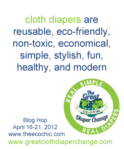 Real Diapers Blog Hop