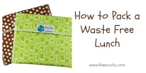 How to Pack a Waste Free Lunch