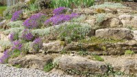 How to build a rockery - The English Garden