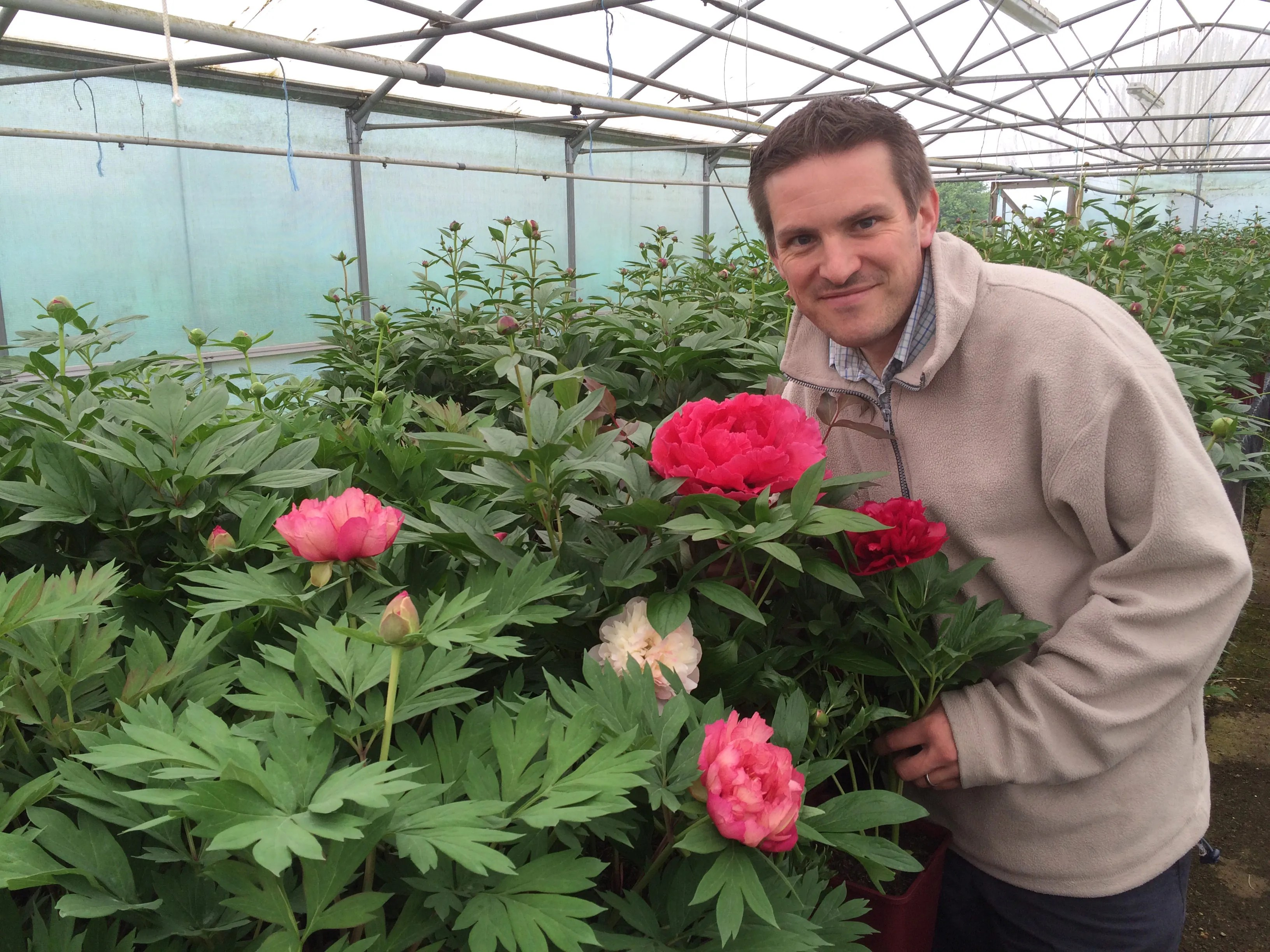 3 rules for growing perfect peonies the english garden for Growing gardens