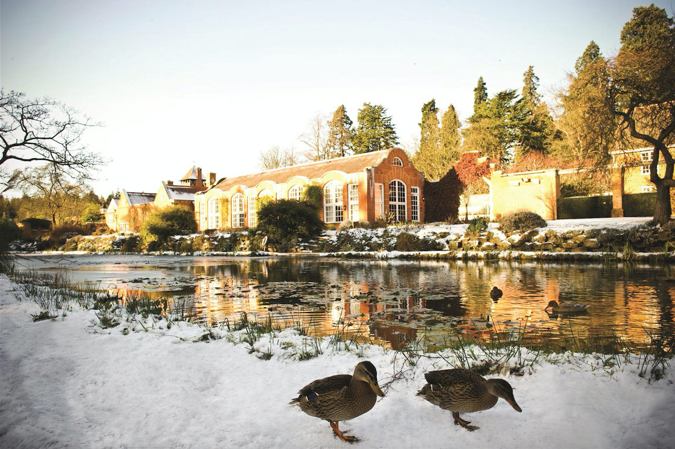 Tylney Hall How To Prepare Your Garden For Winter The English Garden