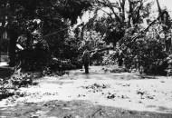 tornado-1916_16-1020-copy