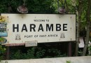 'Harambe' Tops List of Penis Names For June, July