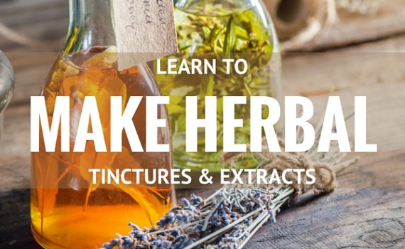 Make Herbal Tinctures and Extracts | The Family That Heals Together