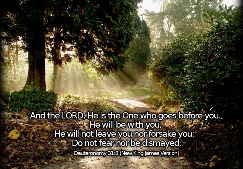 Fall Verse Wallpaper Deuteronomy 31 8 The Fellowship Site
