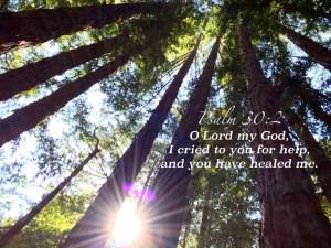 psalm30 2