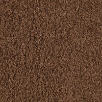 Mohawk Carpet - THE FLOOR SUPERSTORE Where Beautiful ...