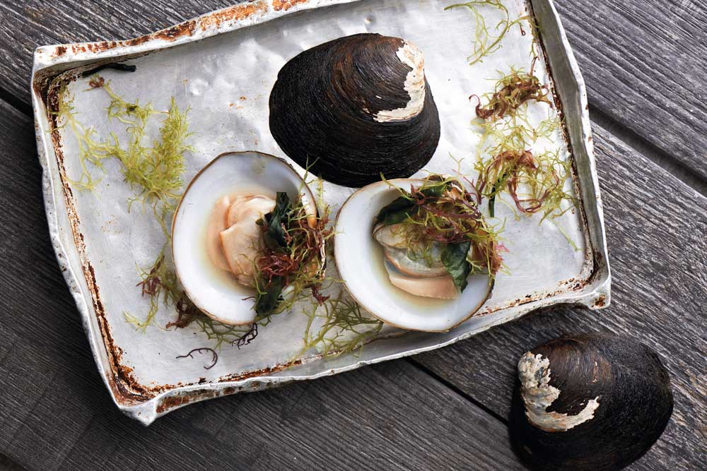 recipes cover story xl clams kelong style