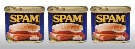seo is spam