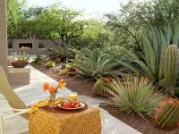How to Give Your Desert Backyard Southwestern Flair   The ...