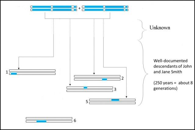 Future of Genetic Genealogy