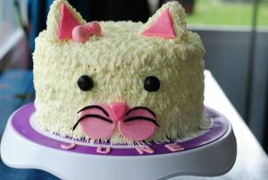 Cat Cake Tutorial and June's Party