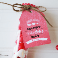 Heartbreaker Valentines with Free Printable