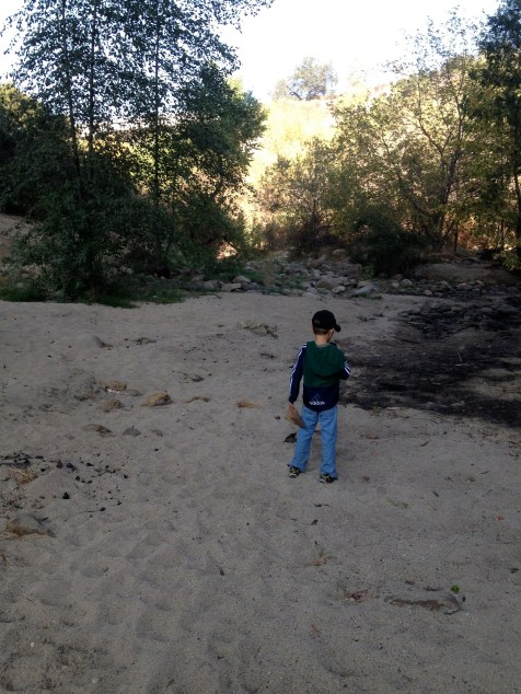 Walking Arroyo Seco