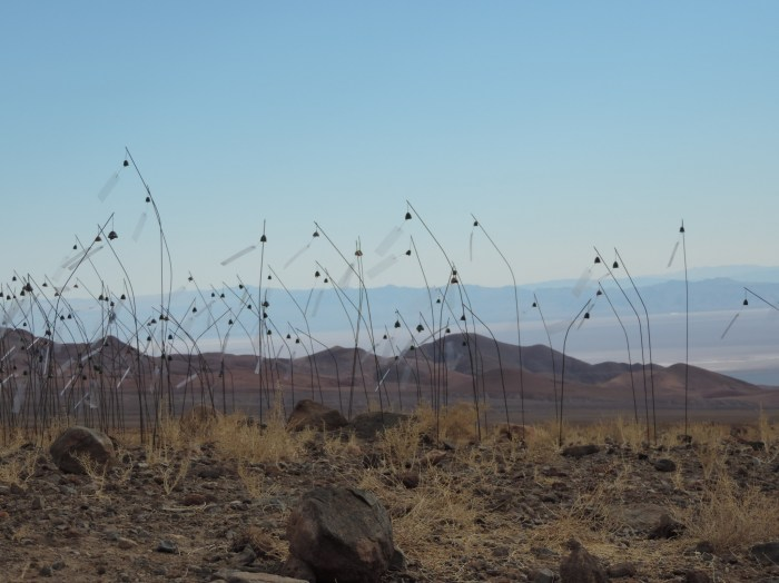 Christian Boltanski. Animitas, 2014