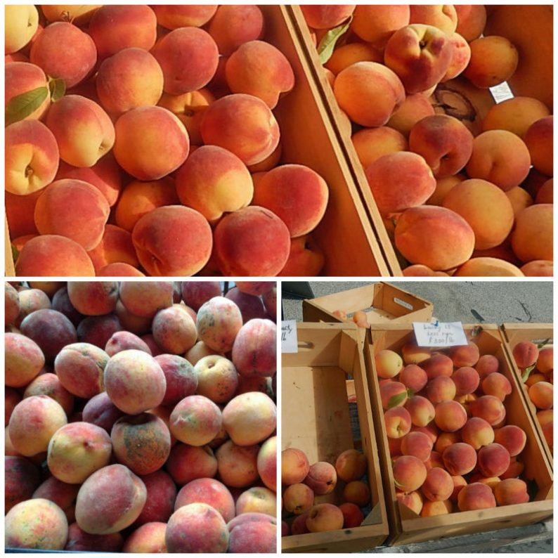 Glorious peaches are available at certain farmers markets