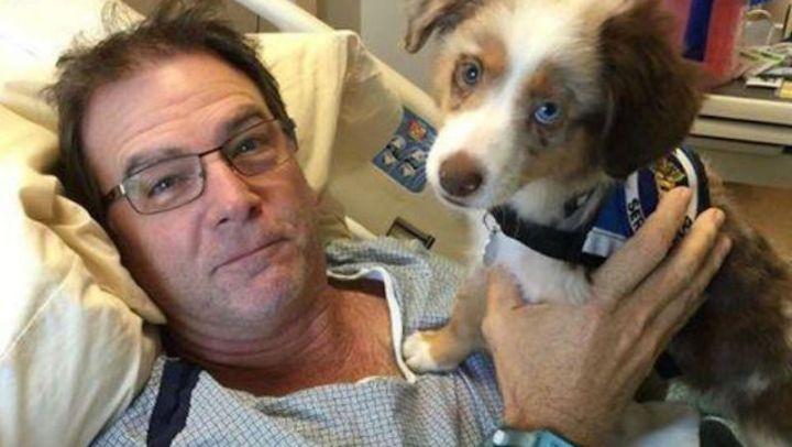 O hospital que permite a visita de animais de estimação para ajudar no tratamento dos donos