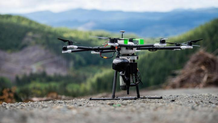 Drones plantam árvores e monitoram desmatamento ilegal
