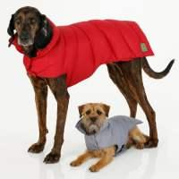 Canine Styles - Puffer Dog Coat - The Green Head