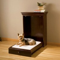 Murphy Bed Just for Pets - The Green Head