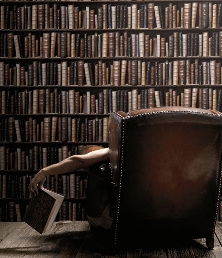 Bookcase Wallpaper The Green Head