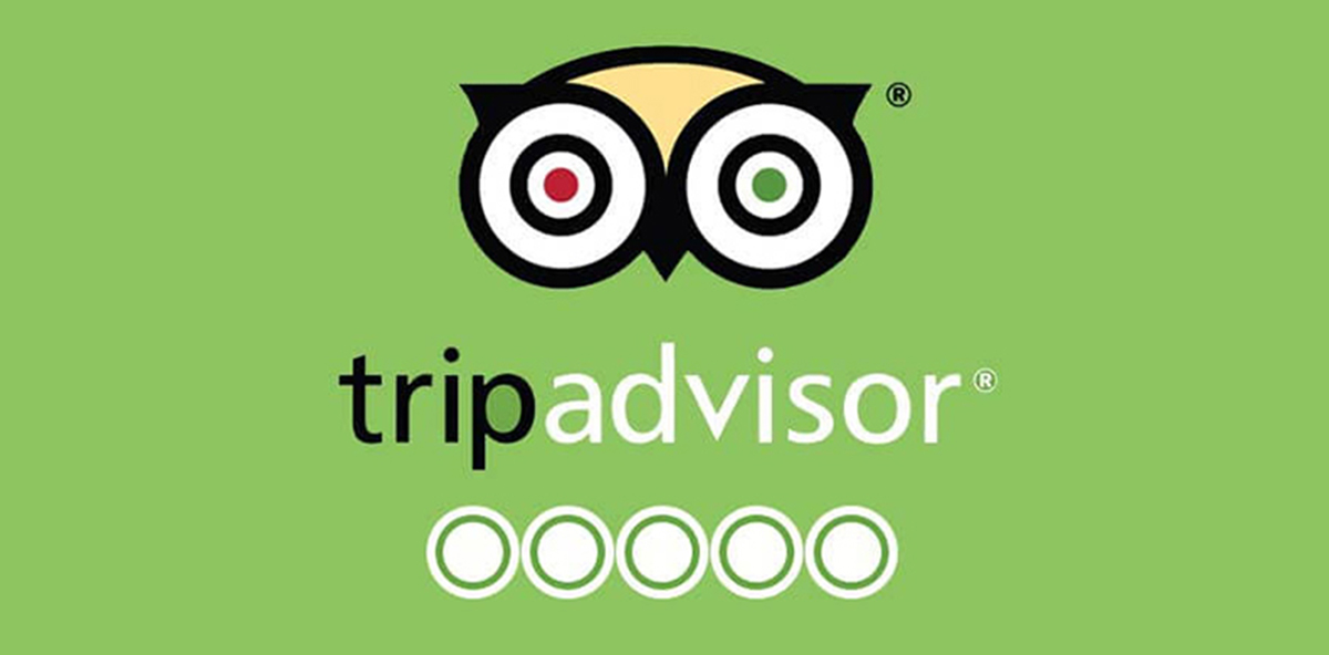 Write a Tripadvisor review