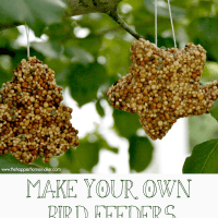 {Kid's Crafts} Make Your Own Birdfeeders