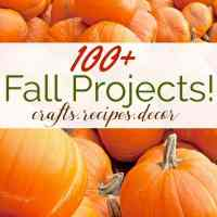 100+ Fall Projects