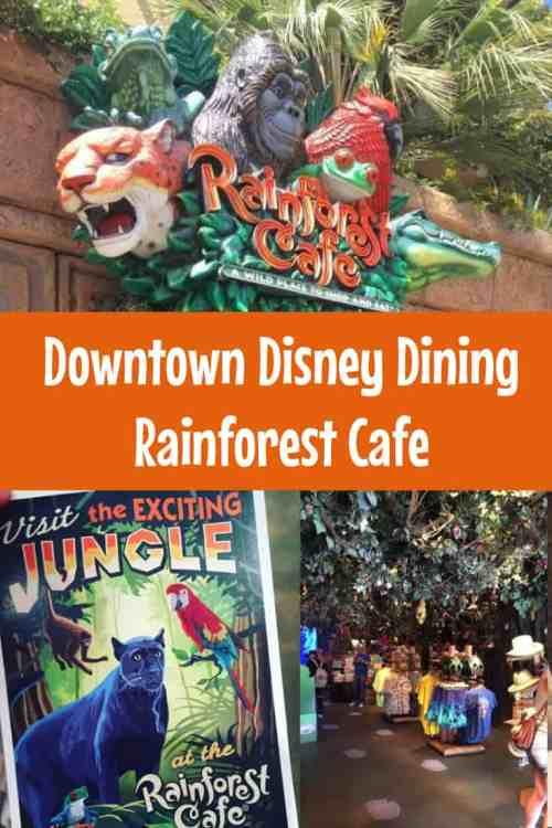 Downtown Disney Dining at Rainforest Cafe, Disneyland Resort.