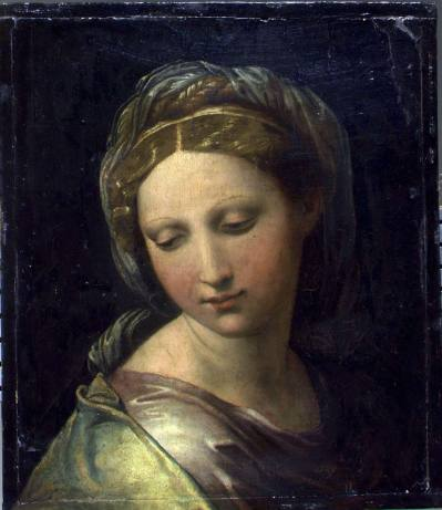 The History Blog » Blog Archive » Possible Raphael found in storage near Modena