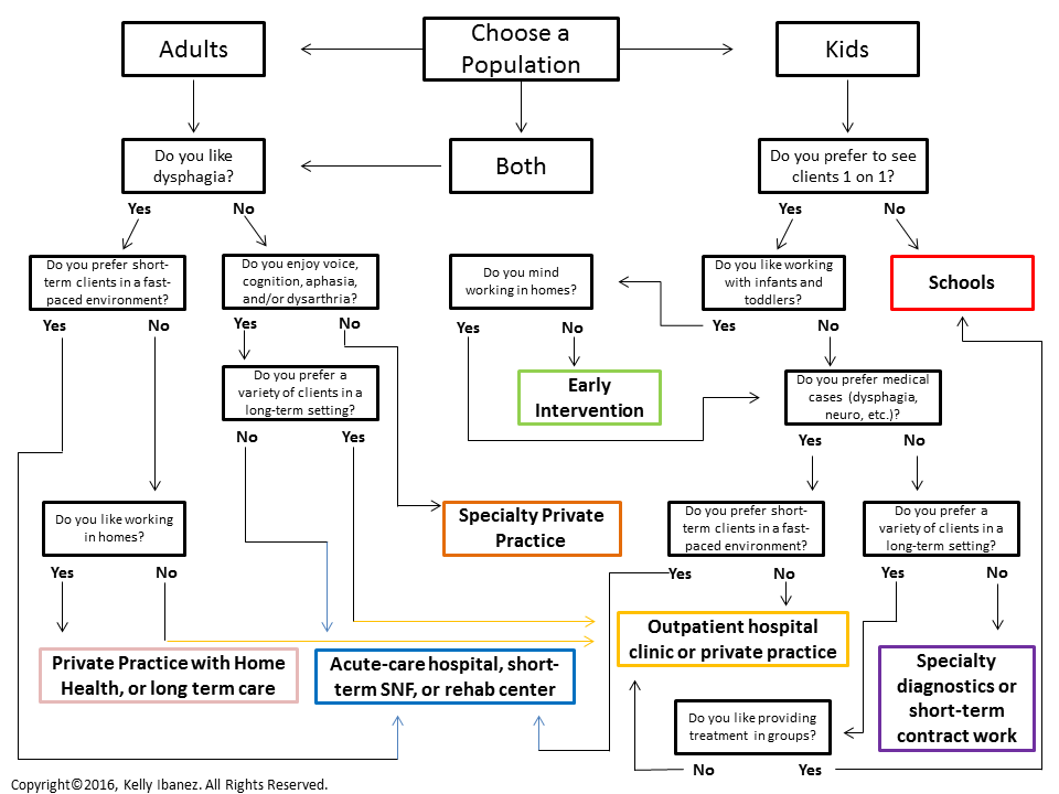SLP Setting Decision Matrix