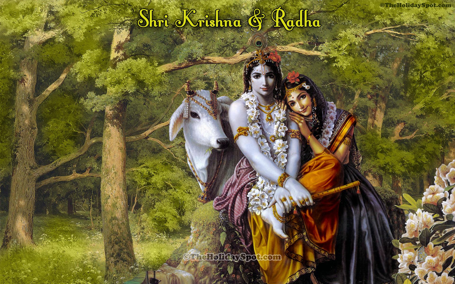 A wonderful high quality illustration of shri krishna and radha