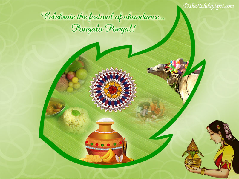 Jyothi 3d Wallpapers Chodavaramnet Pongal Sankranthi Festival 2013 Wallpapers