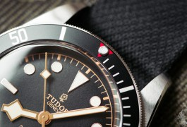 Tudor Black Bay Black