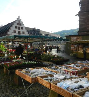 It's Always Sunny in Freiburg
