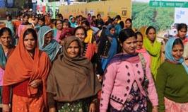 Women Farmers 2
