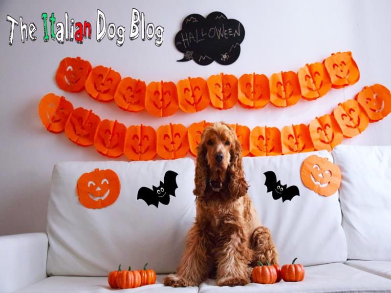 halloween louis