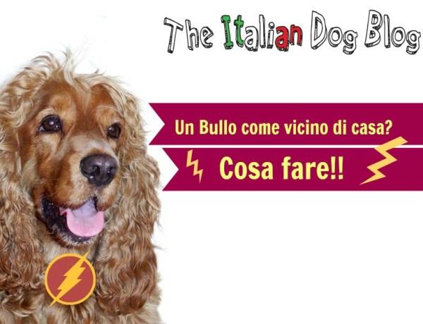 post bullo