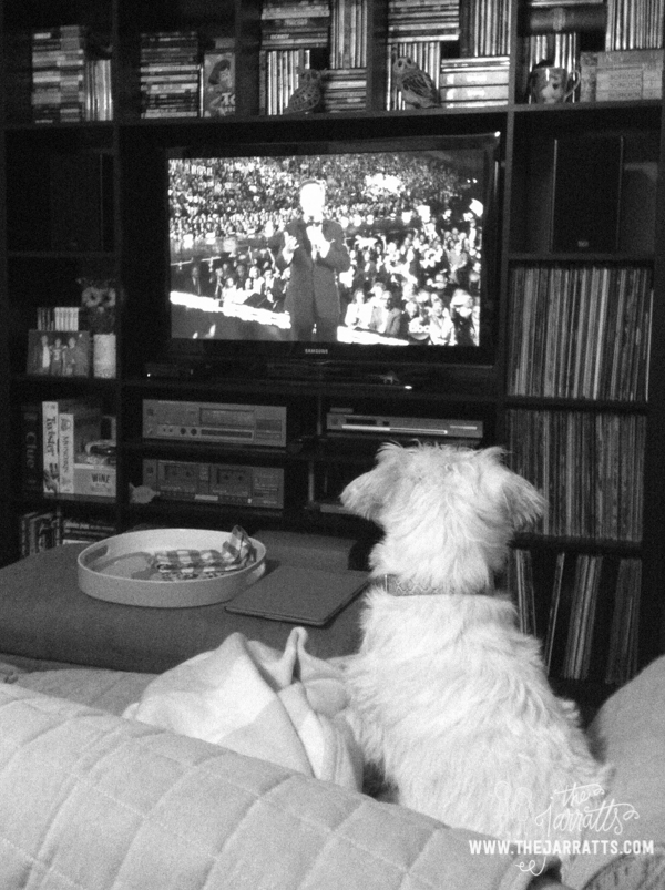 Watching the Miss America Pageant last Sunday. Albert isn't a big fan of sports, but this sure sparked his attention.