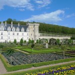 Kale discoveries in the Loire Valley…