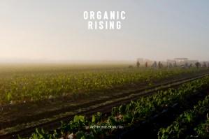 Organic Florida