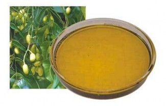 Neem-Extract-includes-Oil-of-Neem-e1318656121468