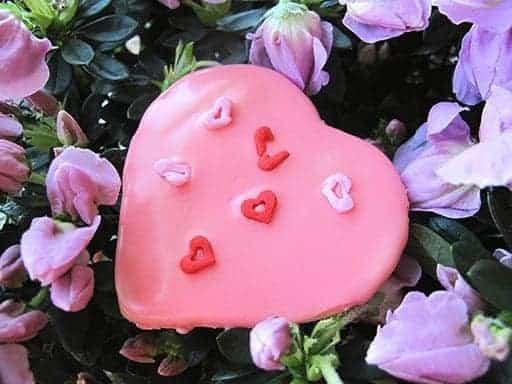Cherry Sugar Cookies