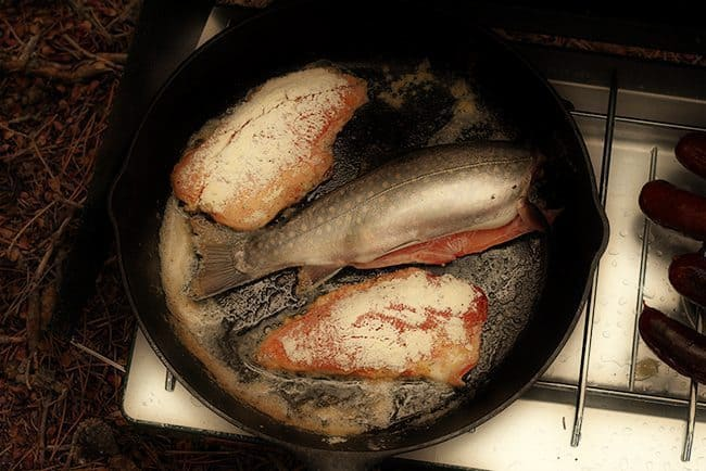 Wild Caught Brook Trout