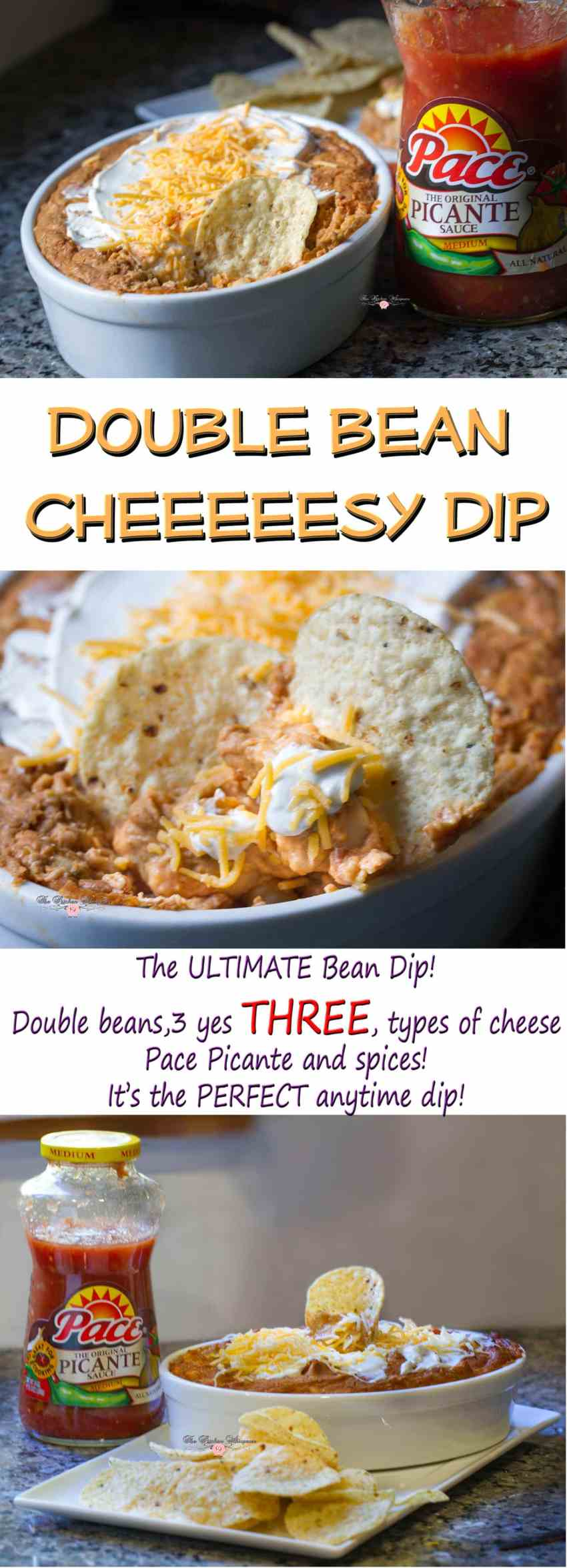 double-bean-cheeesy-dip-collage1